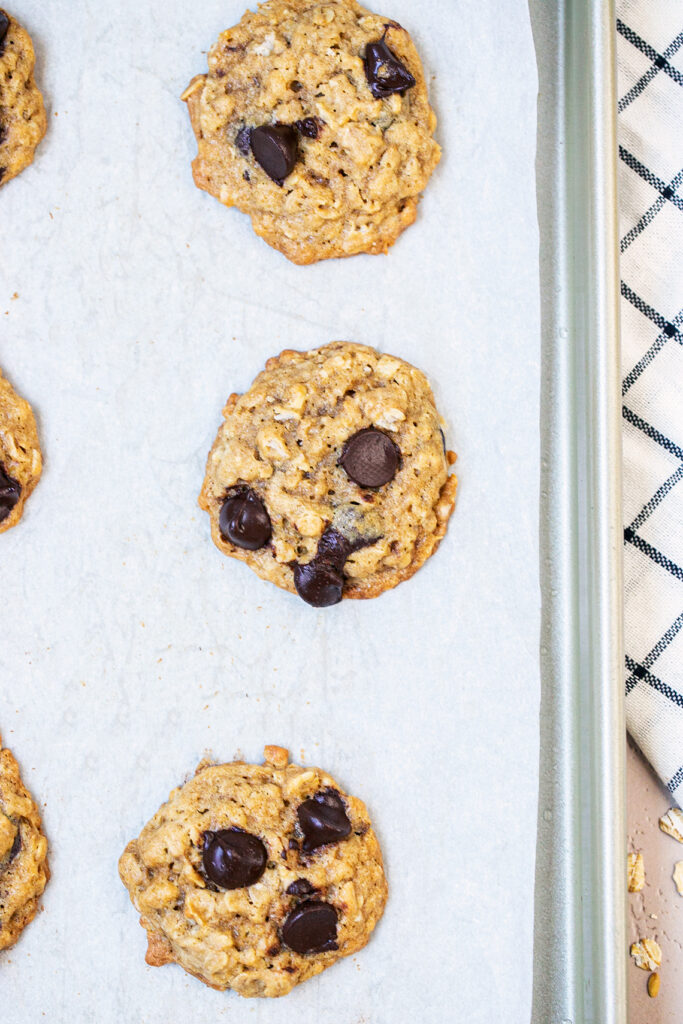 oatmeal chocolate chip cookies on a tray